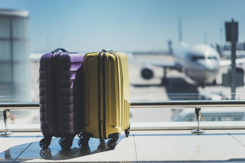 bagagesmice